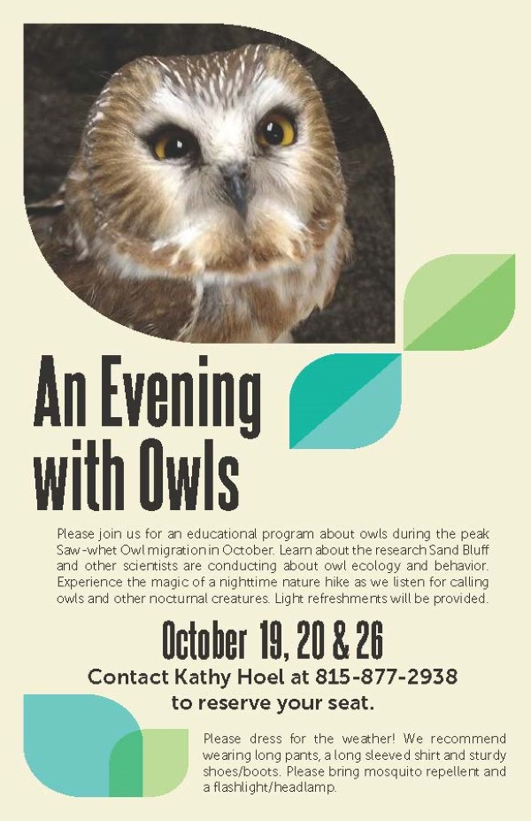 Evening With The Owls at Sand Bluff Bird Observatory